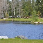 Seal Bay RV Park & Campground - Courtenay, BC - RV Parks