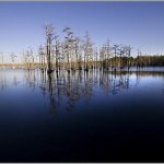 Goodale State Park - Camden, SC - South Carolina State Parks