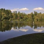 Lake Powhatan Recreational - Asheville, NC - RV Parks