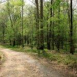 Pocahontas State Park - Chesterfield, VA - Virginia State Parks