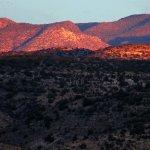 Camp Verde RV Resort - Camp Verde, AZ - RV Parks
