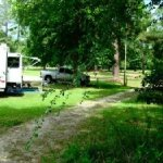 Contentnea Creek RV & Trail Park  - Grifton, NC - County / City Parks