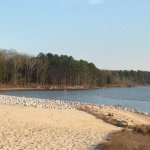 Jordan Lake State Recreation Area - Apex, NC - RV Parks