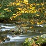 Moccasin Creek State Park - Clarksville, GA - Georgia State Parks