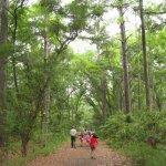 Skidaway Island State Park - Savannah, GA - Georgia State Parks