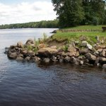 Petenwell Park / Adams County - Arkdale, WI - RV Parks