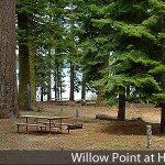 Willow Point Park at Howard Prairie Lake - Ashland, OR - County / City Parks