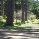Offut Lake Resort - Tenino, WA - RV Parks