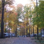 Duke Creek Campground - Cedar Springs, MI - RV Parks
