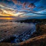 Ano Nuevo State Park - Pescadero, CA - California State Parks
