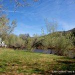 Page Springs Park - Cornville, AZ - RV Parks