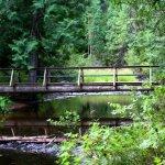 Round Lake State Park - Sagle, ID - Idaho State Parks