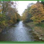 Grassmere Park Campground - Benton, PA - RV Parks