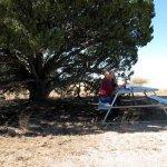 Colcord Ridge Campground - Payson, AZ - Free Camping
