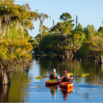 Dead Lakes Recreation Area - Wewahitchka, FL - County / City Parks