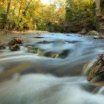 Kankakee River State Park - Bourbonnais , IL - Illinois State Parks