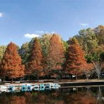 Northwest River Park and Campground - Chesapeake, VA - County / City Parks