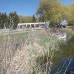 Hayspur Fish Hatchery - Bellevue, ID - Free Camping