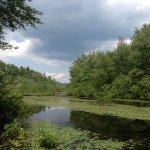 Lake George / Saratoga KOA - Lake Luzerne, NY - KOA