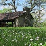 Illini State Park - Marseilles, IL - Illinois State Parks