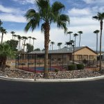 Springhaven RV Resort - Mesa, AZ - RV Parks