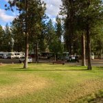 Peaceful Pines Campground - Cheney, WA - RV Parks
