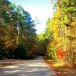 Jimmie Davis State Park - Chatham, LA - Louisiana State Parks