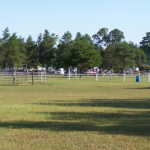Ukarydee Equestrian Camping - Arkdale, WI - RV Parks