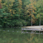 Bear Den Family Campground - Spruce Pine, NC - RV Parks