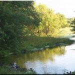 Pioneer Campsite Resort - Wabasha, MN - RV Parks