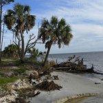 T.H. Stone Memorial St. Joseph Peninsula State Park - Port St. Joe, FL - Florida State Parks