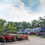 Oak Forest Rv Park - Austin, TX - RV Parks