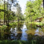 Indian Creek Campground and RV Park - Independence, LA - RV Parks