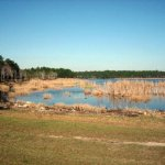 Eagle Hammock RV Park - Kings Bay, GA - RV Parks