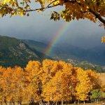 Paradise on the River RV Park - Estes Park, CO - RV Parks