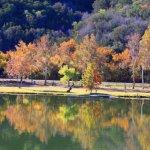 Rockaway RV Park - Burnet, TX - RV Parks