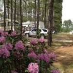 Pinelake Rv Resort Campground - Wagram, NC - RV Parks
