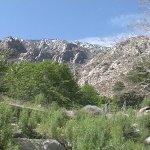 Mount San Jacinto State Park - Idyllwild, CA - California State Parks