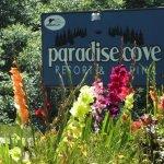 Rockaway Beach RV Resort & Marina - Rockaway Beach, OR 97136, OR - RV Parks
