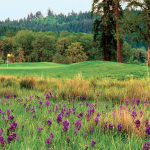Mallard Creek Golf & RV Resort - Lebanon, OR - RV Parks