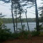 Blueberry Hill Tenting Area - Plymouth, MA - RV Parks