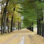 Tall Oaks Family Campground - Monticello, IN - RV Parks