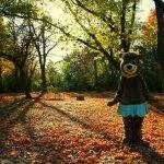 Yogi Bear's Jellystone Park Camp-Resort - Caledonia, WI - Yogi Bear's Jellystone