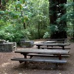 Memorial County Park - Loma Mar, CA - County / City Parks