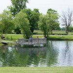 Plymouth Jellystone Park - Plymouth, IN - RV Parks