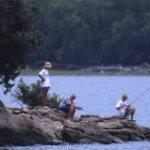 Cedar Point Recreation Area - Tow, TX - Free Camping