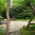 Mt Pisgah Campgrounds - Canton, NC - National Parks