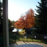 Country-Aire Campground - Babcock, WI - RV Parks