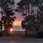 Bay Palms RV Resort - Coden, AL - RV Parks