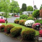 Falcon Wood Village - Eugene, OR - RV Parks